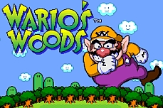 Warios Woods SNES